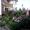 летний отдых в Киргизии в гостинице Восторг,  г Чолпон-Ата #1093665